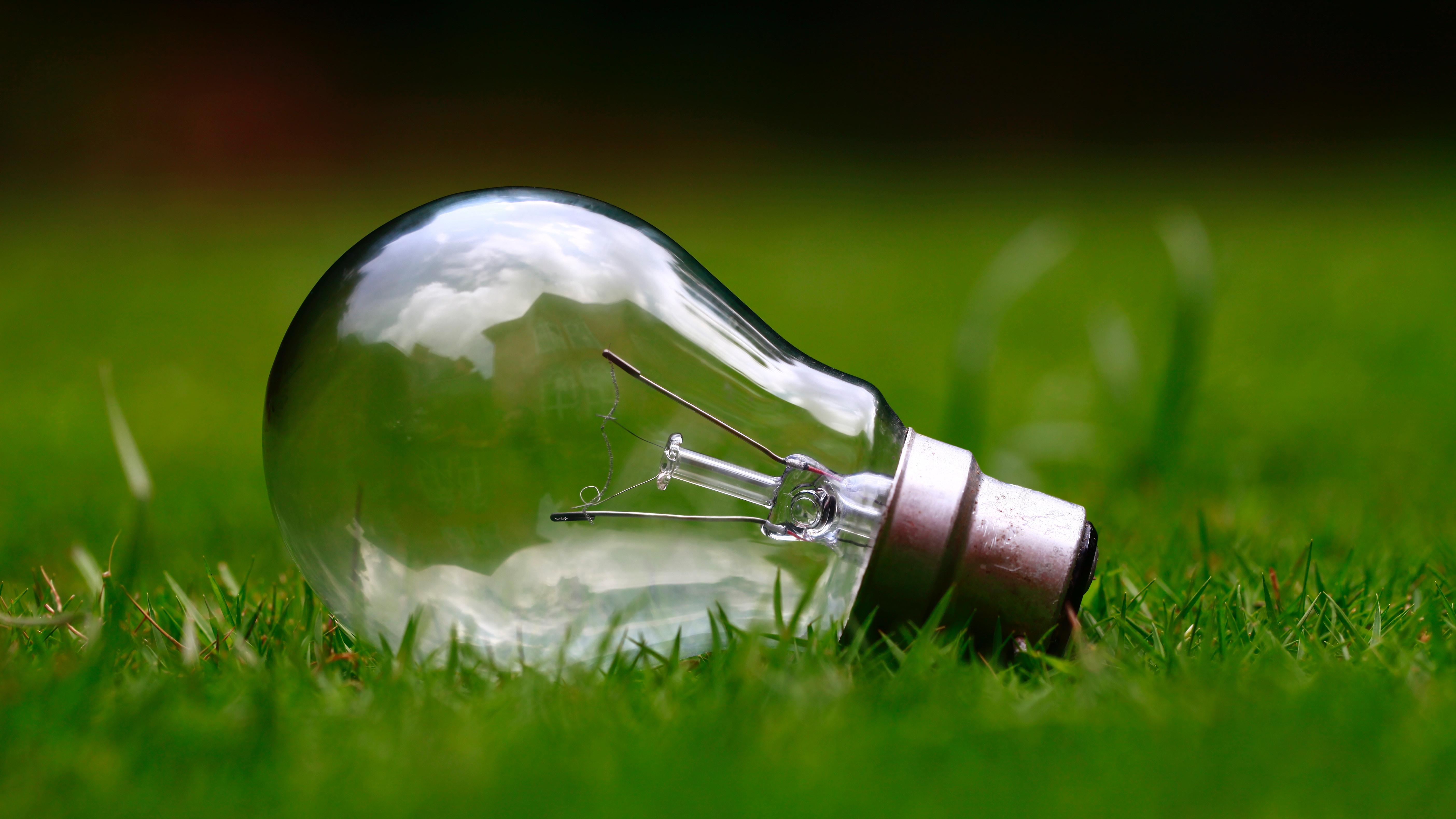 Course Image Corso per mentore nel settore dell'eco-industria